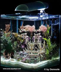 aquarium nano eau de mer nano marinus dennerle complete plus 60 litres zone aquatique