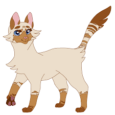 warrior cat mothflutter warrior cat oc by moothic on deviantart