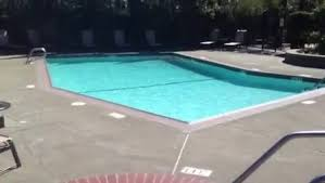 100 Creekside Apartments San Mateo See Reviews Pics Avail