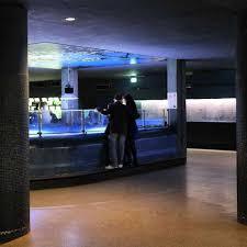 se rendre au palais de la porte dorée au musée de l immigration