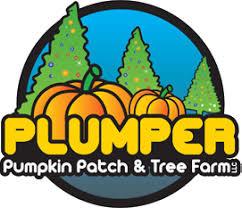 Portland Maine Pumpkin Patch by Pumpkins