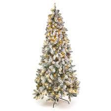 75 Pre Lit Slim Flocked Donner Spruce Christmas Tree