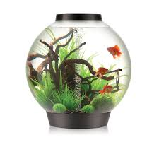 Petco Flower Ball Aquarium Decor by Amazon Com Biorb Classic 105 Aquarium With Intelligent Led Light