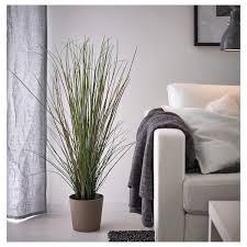 fejka topfpflanze künstlich gras 17 cm ikea österreich