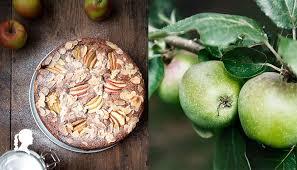 veganer apfelkuchen mit mandeln thermomix rezept