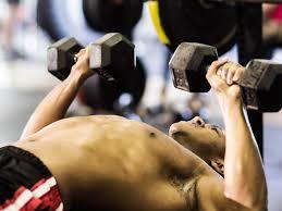 Renaissance Periodization Male Physique Training Templates