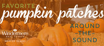 Snohomish County Pumpkin Patches by Seattle Area Pumpkin Patches Emily Roberts