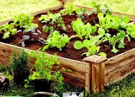 fancy design greenes raised garden bed wonderfull greenes fence 80