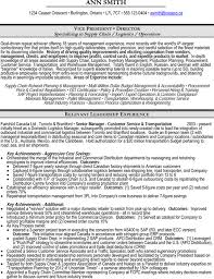 Vice President VP Or Director Of Operations Supply Chain Logistics Resume Sample