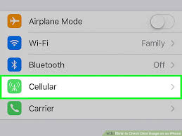 2 Easy Ways to Check Data Usage on an iPhone wikiHow