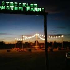 Pumpkin Patch Roseville Ca by Roseville Ca Hulafrog Pumpkin Patch And Haunted Corn Maze