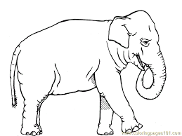 African Elephant Animals Coloring Pages
