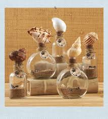 Real Seashell Cabinet Knobs by 39 Best Seashells From The Seashore Images On Pinterest Beach