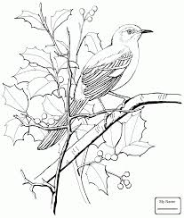 Mockingbird Birds And Magnolia Mississippi State Bird Flower Coloring Pages For Kids
