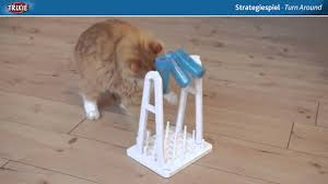 Puzzle cat feeders for bored overweight cats from Health Cats Mart
