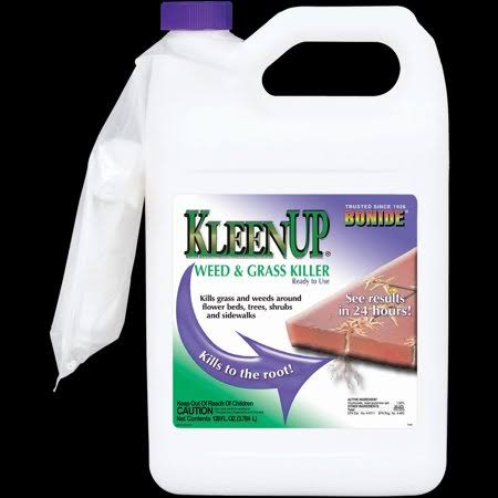 Bonid Kleenup Ready-To-Use Weed & Grass Killer
