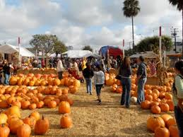 Underwood Farms Pumpkin Patch Hours by Best Pumpkin Patches In And Around Los Angeles Best Family