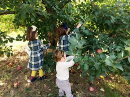 Pumpkin Picking Nj by Where To Wednesday Apple Picking U0026 The New Graco Extend2fit The