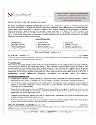 Example Resume Project Manager Sample Free Download Of