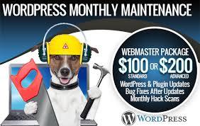Webmaster by Wordpress Webmaster Package In Las Vegas Site Smart Marketing