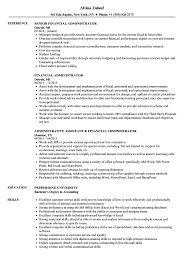 Download Financial Administrator Resume Sample As Image File