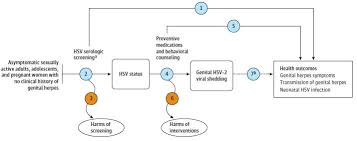 Herpes Viral Shedding Frequency by Evidence Summary Herpes Infection Serologic Screening