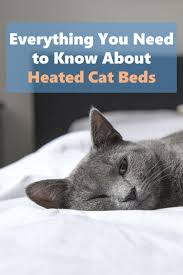 Kh Thermo Kitty Heated Cat Bed by Everything You Need To Know About Heated Cat Beds Bone U0026 Yarn