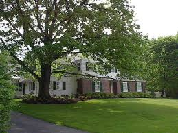 Hound & Hare Too Bed and Breakfast Ithaca New York Lodging