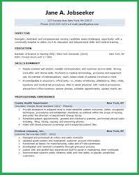 Professional Resume Nursing Student