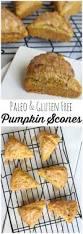 Gluten Free Bisquick Pumpkin Bread Recipe by 190 Best Gluten Free Images On Pinterest Gluten Free Recipes