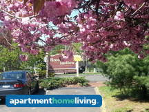 1 Bedroom Apartments In Bridgeport Ct by 4 Bedroom Bridgeport Apartments For Rent Bridgeport Ct