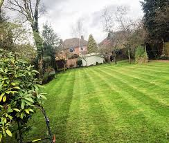 100 The Lawns Lord Of Lichfield 07939010898 Bark Reviews