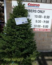 Or Buy Your Tree At Costco