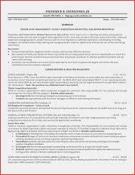 Sample Resume Internship Objectives Fresh Graduate Local