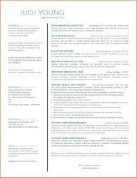 Internet Marketing Template Online Resume Sample Specialist Samples Agreement