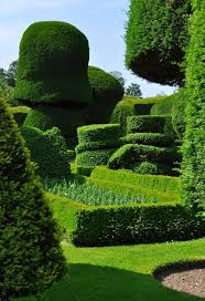 Country Tyme Sheds Hatfield by 407 Best Topiary Images On Pinterest Topiaries Gardens And