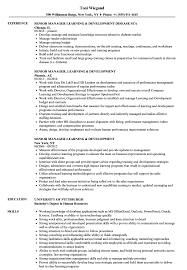 Download Senior Manager Learning Development Resume Sample As Image File