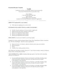 Examples Of Resume Title Ideas Amazing Example