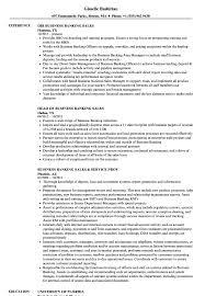 Download Banking Sales Resume Sample As Image File