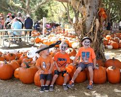 Irvine Great Park Pumpkin Patch by Best Pumpkin Patches In Orange County 2016