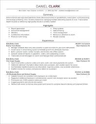 Professional Summary In Resume For Software Engineer Example Examples Entry Level Of Resumes Functional