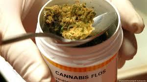neue cannabisagentur vom rauchen raten wir ab