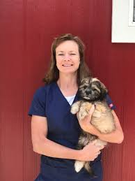Red Barn Veterinary Hospital - Veterinarian In Dahlonega, GA USA ... Veterinary Floor Plan All Valley Animal Care Center Animal Care Red Barn Hospital Vetenarian In Dahlonega Ga Usa Taking Of Sick Animals At Breyer Horses Stablemates Vet Teacher Arrested After Alleged Attack The Nugget Northeast Services Shelby County Missouri 37 Best Blue Frog Offices Images On Pinterest Cstruction Contact