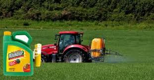 Monsantos Roundup Weedkiller Destroys Life In Humans And Our Soils