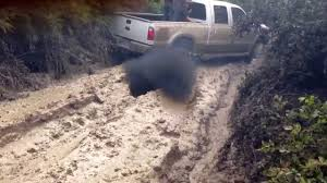 Watch These Giant Mudding Trucks Go Through Some Insane Mud Filled ...