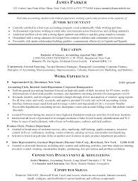 Insurance Manager Resume Example Accounting Clerk Junior Accountant Work Experience