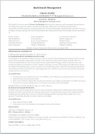 Bank Teller Resume Template Example Professional Summary For Templates Sample