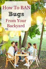 How To Get Rid Of Bugs In Your Backyard & Enjoy Your Backyard BBQ ... How To Keep Mosquitoes Away Geting Rid Of Five Tips For Getting Bugs And Pests On Your Patio Youtube To Get Chiggers Skin Body Yard Symptoms Fast Crawly Catures In My Backyard Alberta Home Gardening 25 Unique Rid Spiders Ideas Pinterest Kill Off Bug Control I Repellent Spiders Spider Spray Sprays Cutter 16 Oz Outdoor Foggerhg957044 The Of Time Tested Bob Vila Pictures With Japanese Beetles Garden Best Indoor Mosquito Killers Insect Cop