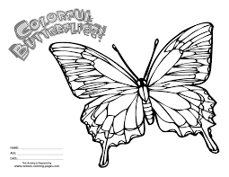 Cartoon Butterfly Coloring Page Printable Sheet Anbu