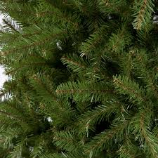 Silver Tip Christmas Tree Oregon by Dunhill Fir Full Unlit Christmas Tree Hayneedle